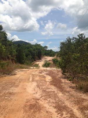 Dirt roads along the north east coast of the island